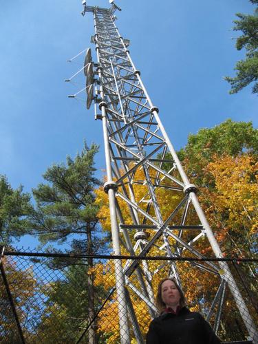 Wireless Radiation, Wireless Radiation Protection