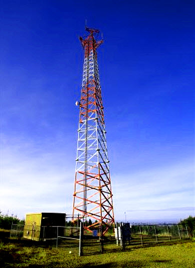 Cell Phone Tower, Cell Tower Radiation Protection