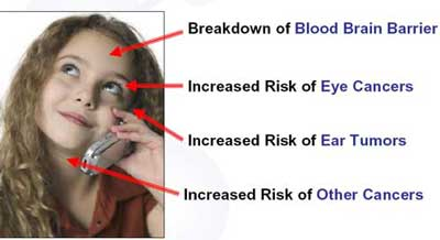 Mobile phone mast radiation electromagnetic fields and cancer q-link reviews sony ericsson cell phone radiation levels.